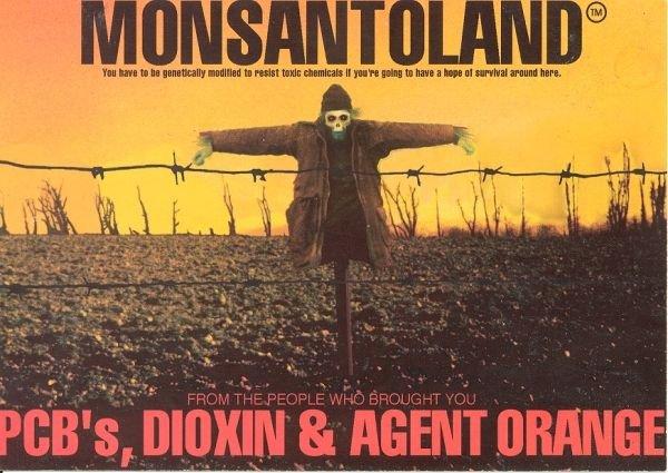 CAMPO DI CONCENTRAMENTO OGM