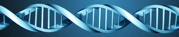 LA VERA PROFEZIA ... ENERGIA DAL COSMO CHE MUTA IL DNA